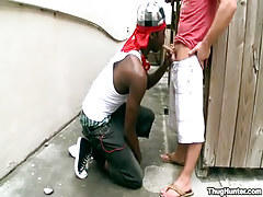 Black Twink Tube Clips